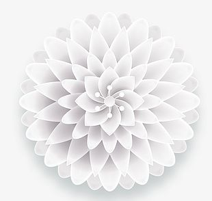 White Simple Three-dimensional Flowers Decorative Patterns PNG