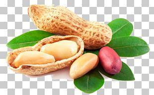Peanut House Peanut Oil PNG