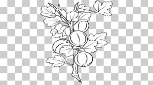 Black And White Visual Arts Drawing Floral Design PNG
