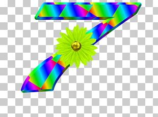 Feather Line PNG