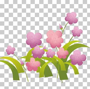 Flower Drawing Photography Illustration PNG