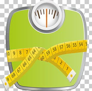 Weight Loss Body Mass Index Human Body Weight PNG