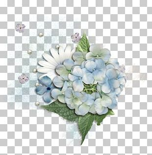 Hydrangea Floral Design Cut Flowers Flower Bouquet PNG