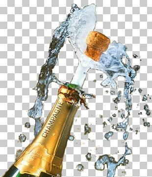 Champagne Wine Bottle Party Greeting & Note Cards PNG