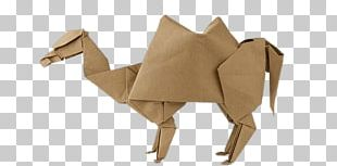 Origami Camel PNG