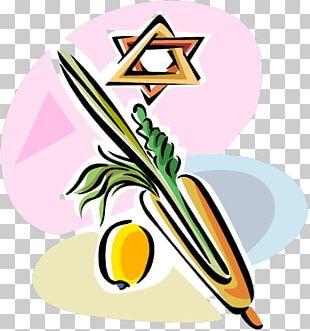 Sukkot Lulav Sukkah Judaism PNG