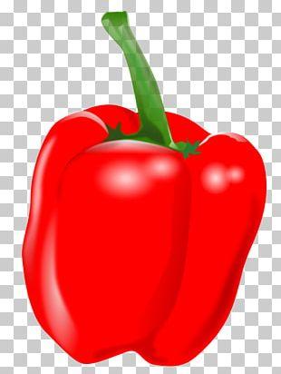 Habanero Piquillo Pepper Tabasco Pepper Cayenne Pepper Capsicum PNG