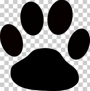 Dog Paw Puppy PNG
