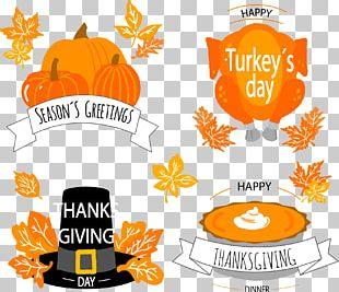 Thanksgiving Pumpkin Autumn Holiday PNG