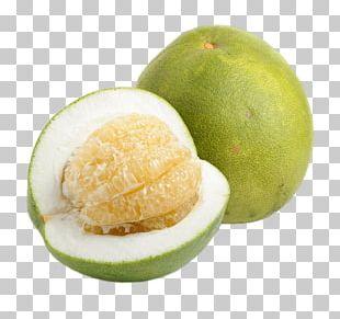 Pomelo Grapefruit Mandarin Orange Ugli Fruit PNG