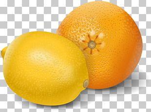 Orange Juice Lemon PNG