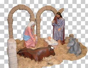 Nativity Scene Nativity Of Jesus Manger Ox Birth PNG