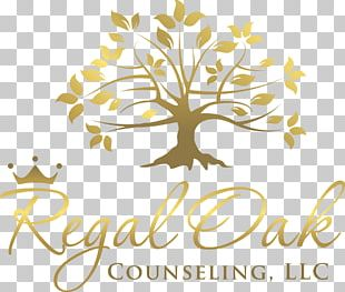 Mansfield Licensed Professional Counselor Mental Health Counselor Counseling Psychology Psychologist PNG
