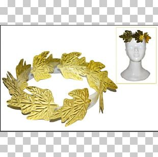 Laurel Wreath Crown Costume Diadem PNG