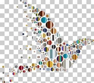 Bird Circle Concentric Objects PNG