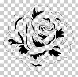 Black And White Drawing Visual Arts PNG