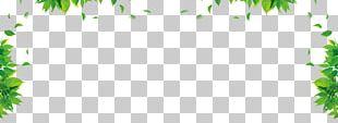 Leaf Graphic Design Green Floral Design Pattern PNG