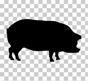 Silhouette Guinea Pig Large White Pig Graphics PNG