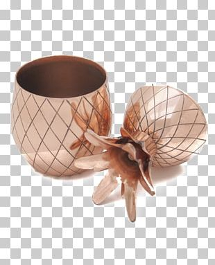 W&P Design Pineapple Tumbler Moscow Mule Cocktail Copper PNG