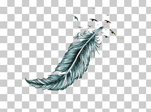 Bird Columbidae Feather Tattoo Eagle PNG