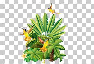 Floral Design Flowerpot Leaf Tree Fruit PNG