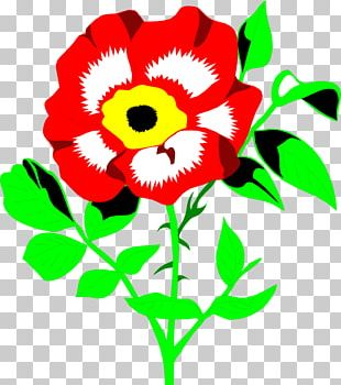Floral Design Cut Flowers Chrysanthemum Plant Stem Annual Plant PNG