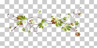 Cherry Blossom Floral Design Petal PNG