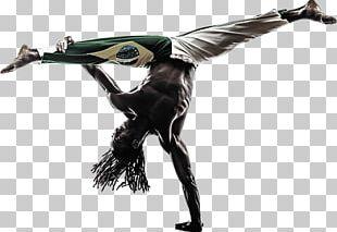 Capoeira Dance Brazil Stock Photography Martial Arts PNG