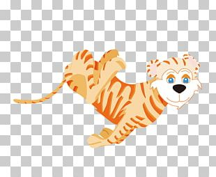 Whiskers Lion Cat Felidae Bengal Tiger PNG