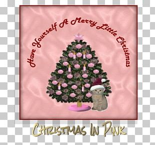 Christmas Tree Christmas Day Greeting & Note Cards Christmas Ornament Pink M PNG