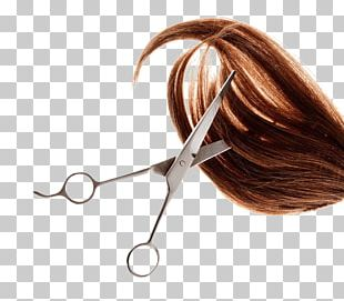 Hairstyle Hairdresser Pixie Cut Beauty Parlour PNG