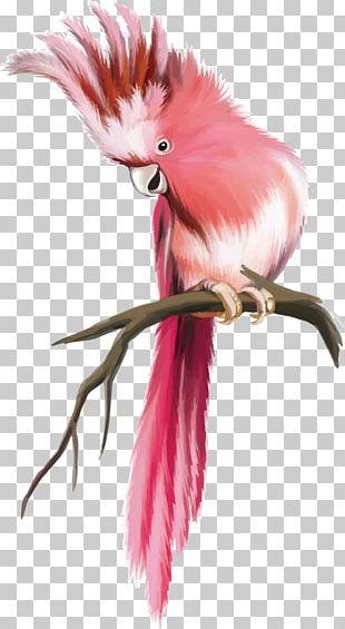 Pug Bird Parrot Bugs Bunny PNG