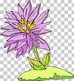 Floral Design Drawing Cartoon Comics PNG
