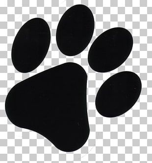 Dog Paw Footprint Puppy PNG