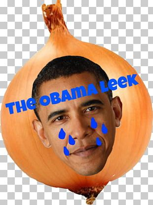 Pumpkin Calabaza Winter Squash United States Of America PNG
