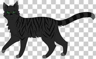Whiskers Domestic Short-haired Cat Digital Art Warriors PNG