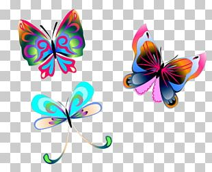Butterfly Insect Pollinator Arthropod PNG