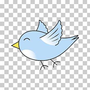 Bird Flight Bird Flight Cartoon PNG