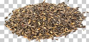 Nilgiri Tea Hōjicha Seed Fennel Flower Commodity PNG
