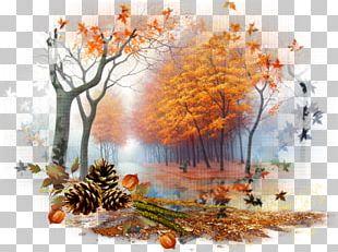 Desktop Nature Autumn Landscape PNG