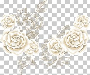 Beach Rose Flower PNG