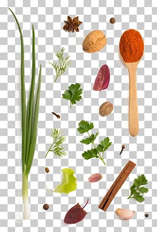 Herb Spice Vegetable Condiment PNG