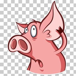 Pig Horse Snout Whiskers PNG