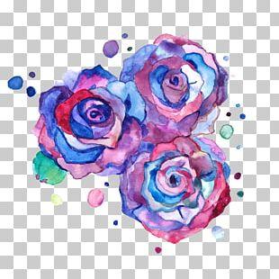 Drawing Rose Color Flower Art PNG