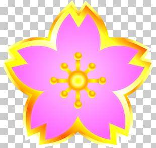 入学式 Petal Cherry Blossom PNG