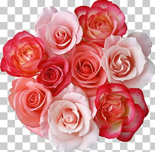 Rose Flower Bouquet PNG