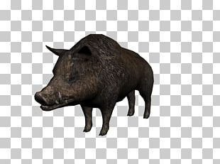 Domestic Pig Red Dead Redemption 2 Video Games Hunting PNG