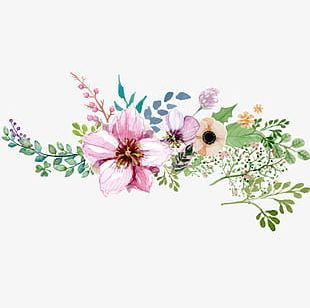 Hand Painted Watercolor Flower Decoration Pattern PNG