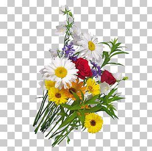 Chrysanthemum Indicum Flower Bouquet PNG