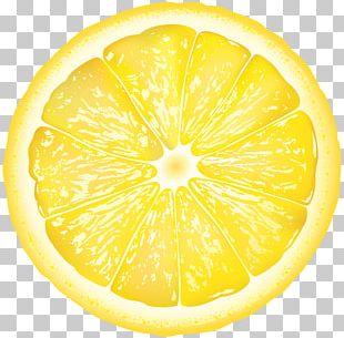 Sweet Lemon Citron Grapefruit Citrus Junos PNG